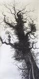Balancing oak Tree by Susan Deakin, Drawing, Charcoal on Paper