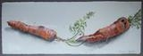 Carrots by Susan Deakin, Drawing, Pencil crayon on paper