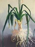 Musselburgh Leek by Susan Deakin, Drawing, Pastel on Paper