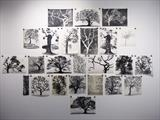 oak tree portraits by Susan Deakin, Artist Print, Monotypes